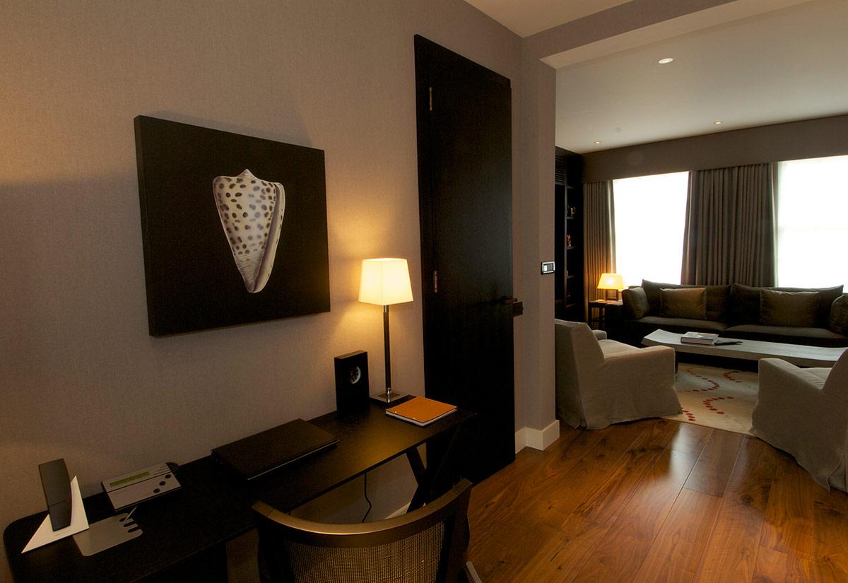 Luxurious London Home